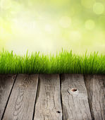 Grass and planks abstract presentation background concept — Stock Photo