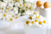Cosmetics chamomile and empty container — Stock fotografie