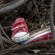 Stock Photo: Forensics and investigation kid shoes in forest