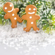 Smiling gingerbread man with christmas tree branch — Stock Photo
