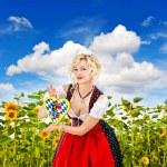 Bavarian girl in tracht dress dirndl in sunflower field — Stock Photo #13371804
