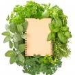 Empty recipe book with variety fresh herbs — Stock Photo #13397028
