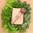 Recipe book with variety fresh herbs and decoration - Stock Photo