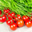 Tomatoes, chives and salad — Stock Photo
