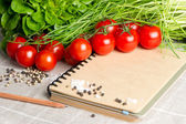 Open notebook with tomatoes, chives and spices — Stock Photo