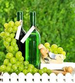 Botella de vino, queso y uvas — Foto de Stock