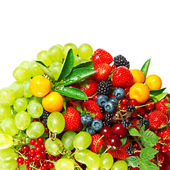 Mix of berries — Stock Photo