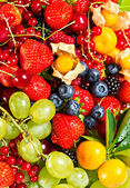Mix of fresh berries and fruits — Stock Photo