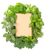 Empty recipe book with variety fresh herbs — Stock Photo