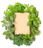 пустой рецепт книга с разнообразием свежих трав — Стоковое фото