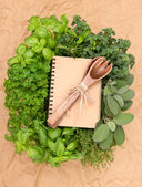 Recipe book with variety fresh herbs and decoration — Stock Photo