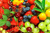 Fresh summer berries and fruits — Stock Photo