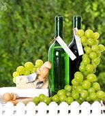 Botella de vino, uva y queso — Foto de Stock