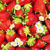 Close up of fresh strawberries with daisy flowers — Stock Photo