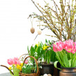 Spring flowers with easter eggs decoration — Stock Photo #13403205