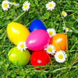 Stock Photo: Colorful easter eggs with daisy flowers