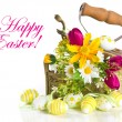 Spring flowers and easter eggs on white background — Stock Photo