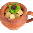 Old ceramic pot with money coins and clover leaf — Stock Photo #13405419