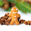 Smiling gingerbread man with christmas spices - Stock Photo