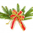 Christmas tree branch with red ribbon — Stock Photo