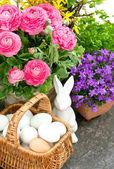 Krásný jarní květy s velikonoční dekorace — Stock fotografie