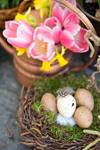 Spring flowers with easter eggs decoration — Stock Photo
