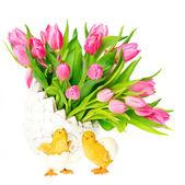 Spring tulip flowers on white background — Stock Photo