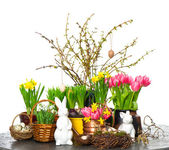 Spring flowers with easter bunny and eggs decoration — Stock Photo