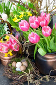Colorful spring flowers with easter decoration — Stock Photo