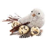 Uccello con piume e uova — Foto Stock