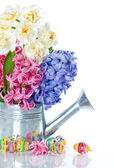 Narcissus and hyacinth. colorful spring flowers with easter eggs — Stock Photo