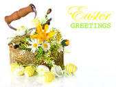 Spring flowers and easter eggs — Stockfoto