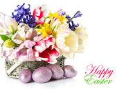 郁金香、 水仙、 风信子和复活节蛋 — 图库照片