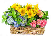 Colorful hortensia and sunflowers with golden ribbon — Stock Photo