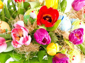 Painted easter eggs with tulips — Stockfoto