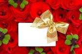 Röda rosor med gröna blad av klöver — Stockfoto