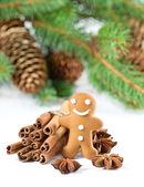 Lachende speculaaspop met kerstmis kruiden — Stockfoto