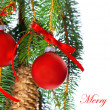 Merry christmas. decoration with red balls and fir tree branch — Stock Photo #13410481