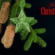 Fir tree branch with shiny star decoration — Stock Photo