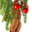 Christmas decoration with red balls and fir tree branch — Stock Photo