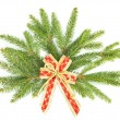 Branch of christmas tree with red ribbon. christmas and new year — Stock Photo #13410812