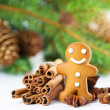 Smiling gingerbread man with christmas spices — Stockfoto