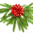 Christmas tree branch with red ribbon — Stock Photo #13410823