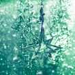 Shiny green star. christmas decoration. abstract background — Stock Photo