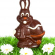 Stock Photo: Chocolate easter bunny with daisy flowers
