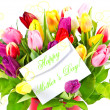 Colorful bouquet of fresh tulips - Stock Photo