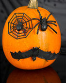 Pumpkin with spiders and bat — Stock Photo