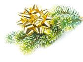 зеленые сосны с золотой лентой. новый год и рождество декор — Стоковое фото