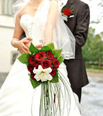 10 Lovely and Romantic Red Rose Flowers Bokeh 2015