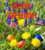 Colorful easter eggs on a beautiful spring meadow with dandelion — Stock Photo
